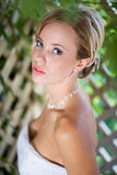 Portrait of bride looking up Royalty Free Stock Image