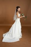 Portrait of the bride with a rose. Happy bride is posing in a photo studio Royalty Free Stock Image
