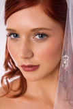 Portrait of bride with veil Stock Photos