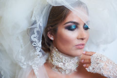 Portrait of bride with a veil and makeup.  Royalty Free Stock Images