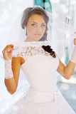 Portrait bride in a veil Royalty Free Stock Photography
