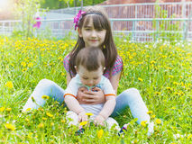 Portrait of brother and sister together sitting in dandelion field stock images