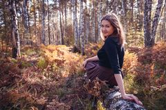 Portrait of brown haired girl in the forest in sunlight, autumn fall concept in the autumn park. Outdoor shot. Copy space. Portrait of brown haired girl in the royalty free stock image