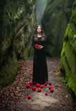 Portrait of a brunette in a black dress that stands near the rocks and holds in his hands Royalty Free Stock Photo