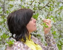Portrait of brunette cherry orchard Royalty Free Stock Photography