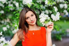 Portrait of brunette girl on a background of flowering trees Royalty Free Stock Image