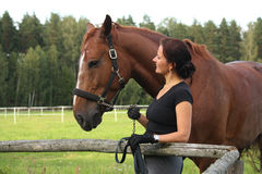 Portrait of brunette woman and brown horse Royalty Free Stock Image