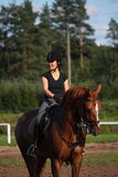 Portrait of brunette woman riding brown horse Royalty Free Stock Image