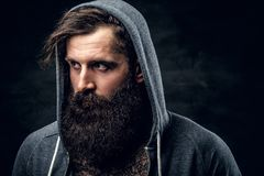 Bearded male with tattoo on a chest, dressed in a grey hoodie. Portrait of brutal bearded male with tattoo on a chest, dressed in a grey hoodie Royalty Free Stock Photos