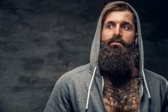 Bearded male with tattoo on a chest, dressed in a grey hoodie. Portrait of brutal bearded male with tattoo on a chest, dressed in a grey hoodie Royalty Free Stock Photography