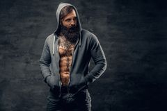 Bearded male with tattoo on a chest, dressed in a grey hoodie. Portrait of brutal bearded male with tattoo on a chest, dressed in a grey hoodie Royalty Free Stock Images