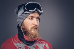 Portrait of a brutal redhead bearded male in a winter hat with protective glasses dressed in a red sweater, posing with stock image