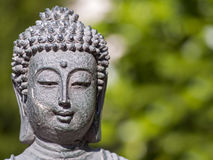 Portrait of a buddha against green Royalty Free Stock Photos