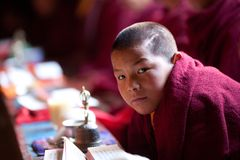 Portrait of buddhist monk during puja ceremony Royalty Free Stock Image