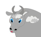 Portrait of the bull Stock Photography