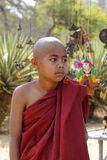 Portrait of Burmese novice monk. Unidentified Burmese novice in the robe in Bagan, Myanmar. The provisional results of the 2014 Myanmar Census show that the stock photos