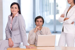 Portrait of business colleagues Royalty Free Stock Images