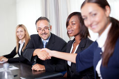 Portrait of business colleagues shaking hands Royalty Free Stock Photos