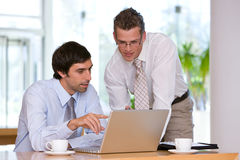 Portrait of business colleagues working Royalty Free Stock Image