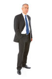 Portrait of business man Royalty Free Stock Photos