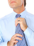 Portrait of a business man Royalty Free Stock Photography