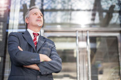 Portrait of a business man Royalty Free Stock Image
