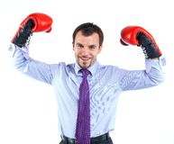 Portrait of a  business man in red boxing gloves Royalty Free Stock Photos