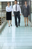 Portrait of business people walking on corridor at office Stock Photos