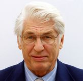 Portrait of a businessman Royalty Free Stock Photos
