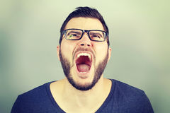 Portrait of a businessman screaming Royalty Free Stock Images