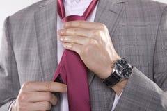 Portrait of businessman tying tie Royalty Free Stock Image