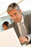Portrait of businessman at work Royalty Free Stock Images