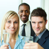 Portrait of businesspeople toasting with champagne. Portrait of business people toasting with champagne in an office Stock Photography