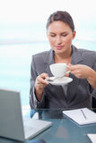 Portrait of a businesswoman drinking tea Stock Photography