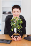 Portrait of a businesswoman looking at a plant Royalty Free Stock Photo