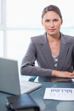 Portrait of a businesswoman working Royalty Free Stock Photography