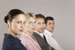 Portrait Of Businesswomen And Men In Row Royalty Free Stock Image