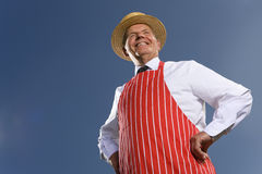 Portrait of butcher in striped apron Royalty Free Stock Photos