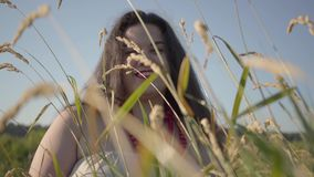 Portrait of carefree overweight woman in summer dress necklace looking at the camera through the ears of wheat smiling. Portrait of carefree overweight woman in stock video footage
