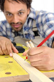 Portrait of carpenter. Carpenter working piece of wood Royalty Free Stock Image