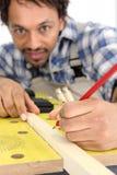 Portrait of carpenter Royalty Free Stock Image
