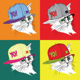 Portrait of cat in the glasses and in hip-hop hat. Pop art style vector illustration. Stock Photography