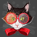 Portrait of  cat in red glasses and a bow Stock Photo