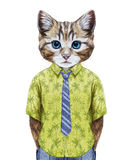 Portrait of Cat in summer shirt with tie. Hand-drawn illustration, digitally colored Royalty Free Stock Images