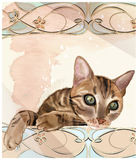 Portrait of  the cat in watercolor style. Royalty Free Stock Photo