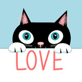 Portrait of a cat with the word love Royalty Free Stock Images