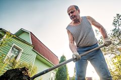 Portrait of caucasian male farmer with shovel digging the land in the country house. He is dressed in tattered trousers and a striped T-shirt royalty free stock photography
