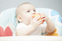 Portrait of caucasian rosy-cheeked tot Stock Images