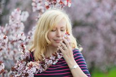 A portrait of Caucasian woman with blond hair near blossoming cherry tree, looking to the camera royalty free stock images