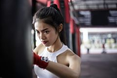 Portrait charming beautiful boxer woman: Attractive girl is practicing boxing. Gorgeous girl is punching target. Pretty girl love stock photo